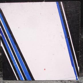 Luis Salazar | Instalación (detalle) | materiales diversos | 2006