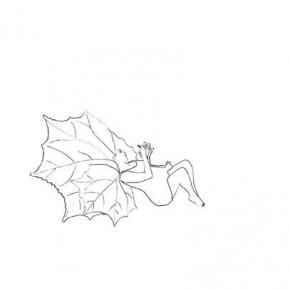 Dibujo de la serie jardín interior | 2009