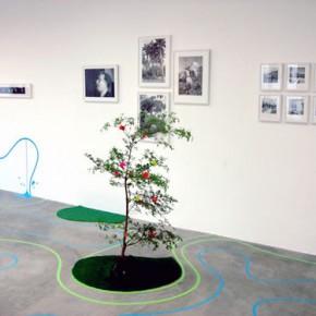 Vista de sala | Obras de Andrea Ayala y fotografías de Andrés Tabora