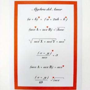 Algebra del amor | Gabriel Castillo | 2009 | impresión digital