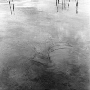 For the Barefoot #|2005 | Inyección de tinta sobre papel de algodón | 2005 | 22 x 22 cm | Edición de 3 + AP