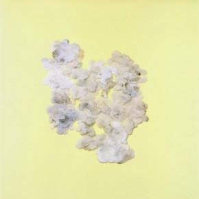 Velado | 2012 | Archival pigment print, edición: 5 + p/a | 70cmx70cm
