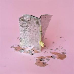Libro de estudio II | 2012 | Archival pigment print, edición: 5 + p/a | 70cmx70cm