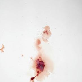 Erika Ordosgoitti | Volcán (De la serie Mensual) | 2012 | Sangre sobre papel