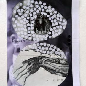 Luis Romero | Sin título (Rayos X) | 2011 | Collage