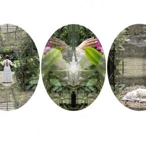 Liliana (2011) | C-Print encapsuladas en acrilico | 30 x 40 cm c/u | Ed. de 5