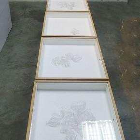 De la imposibilidad de volar | 2012 | 6 cajas de 48 x 41 cm c/u | Técnica mixta