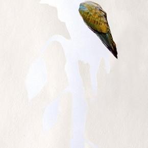 Tortolita sabanera buscando donde anidar | 2013 | 83 x 46 cm | Técnica mixta