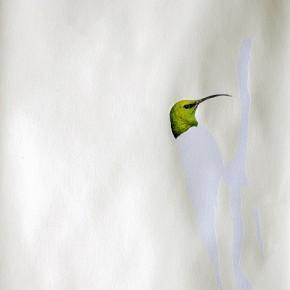 Pavita puescuecipelada esperando al macho | 2013 | 58 x 43 cm | Técnica mixta