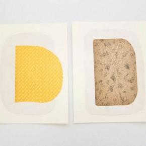 Salvat 2 / Salvat 3 | 2012 | Guardas de libros sobre cartulina bristol | 24 x 30 cm