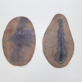Sin titulo Marrón y azul | 2012 | Fieltros teñidos con azul de metileno, hematoxilina y tinta negra | 24x 15; 26x 14,5 cm