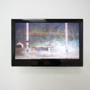 Rosario Lezama | La nueva Atlántida | 2011