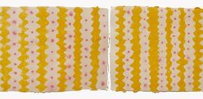 Sheroanawe Hakihiiwe | Watha Oni (Gran Serpiente Tragavenados) | 2011 | 35 cm x 400 cm | Papel artesanal de fibras recicladas y pigmentos