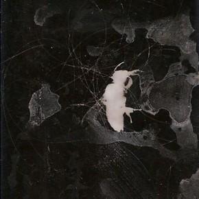 Érika Ordosgoitti | NADA | 2012 | 4.2 x 5 cms