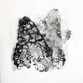 29. Lepidoptero A | 2013 | Tintas de pigmento y agua sobre papel | 40 x 30 cm