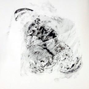 29. Lepidoptero B | 2013 | Tintas de pigmento y agua sobre papel | 40 x 30 cm