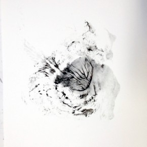 29. Lepidoptero D | 2013 | Tintas de pigmento y agua sobre papel | 40 x 30 cm