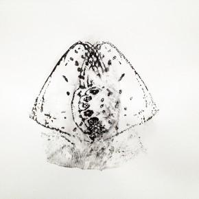 4. Serie Lepidópteros. Nabokovia faga excisicosta I | 2013 | Tintas de pigmento y agua sobre papel | 55 x 75 cm