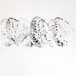 5. Serie Lepidópteros. Nabokovia faga excisicosta II | 2013 | Tintas de pigmento y agua sobre papel | 55 x 75 cm
