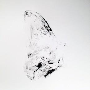 8. Lepidopteros. Palometa III | 2013 | Tintas de pigmento y agua sobre papel | 55 x 37 cm