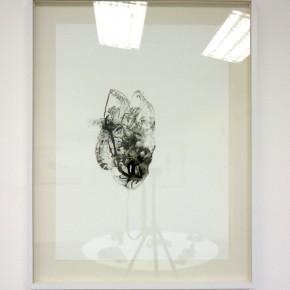 Serie Lepidópteros. Palometa I | Vistas de sala