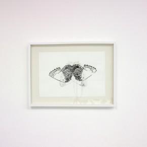 Serie Lepidopteros. Nabokovia I| Vista de sala