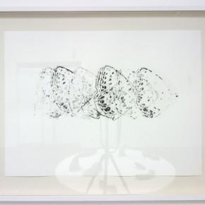 Serie Lepidópteros. Nabokovia faga excisicosta II | Vista de sala