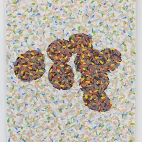 11. DDNMCMYB-SPC #2 | 2013 | Pintura de acrílico y pintura de caucho | 40 x 30 cm