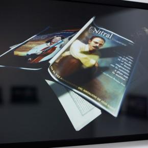 Vista en sala |Vitral| Serie Lecturas difíciles | 2009-2010 | Fotografía digital s/papel fotográfico Kodak Endura | 60 x 42 cm