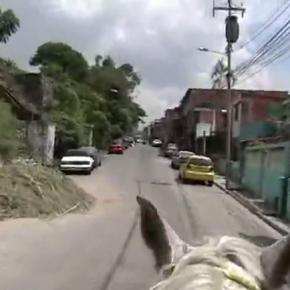 Iván Candeo| 23 de Enero | 2011 | Video | 31'51'' | (Still de video)
